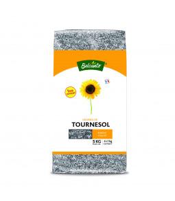 Tournesol Strié Petit 4 + 1 kg gratuit