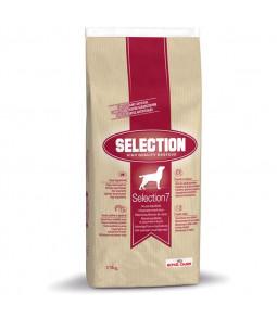 Royal Canin Selection Premium 7 pour chien