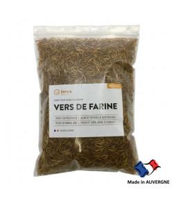 Vers de farine déshydratés 1kg INVERS