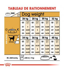 Royal Canin Adult Labrador Retriever 12kg