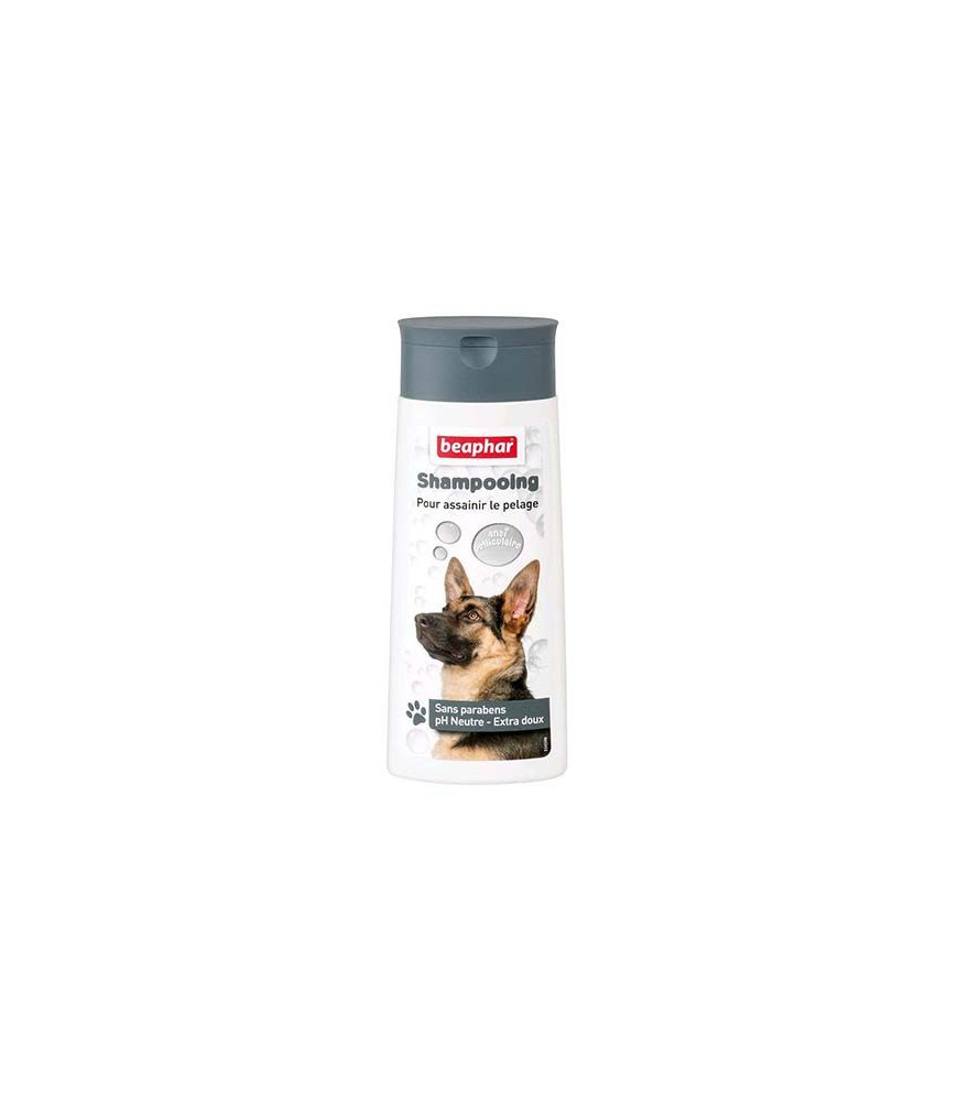 Shampooing anti-pelliculaire 250 mL - Beaphar