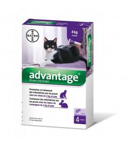 Advantage pour chats et...