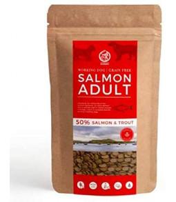 Croquettes chiens au saumon sans céréales